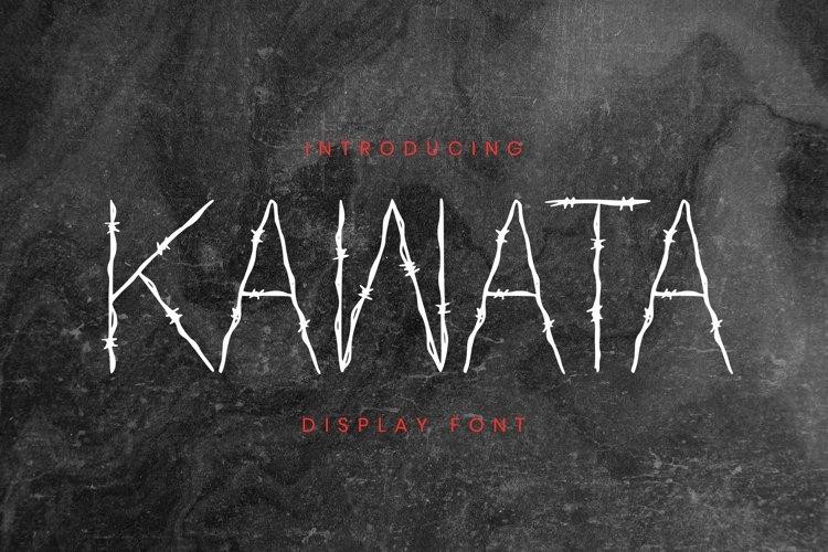 Web Font Kawata Font example image 1