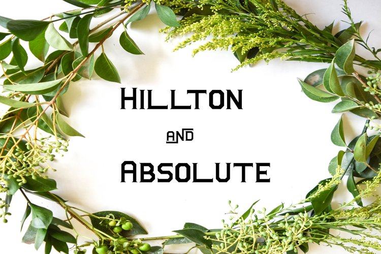Hillton and Absolute Italic
