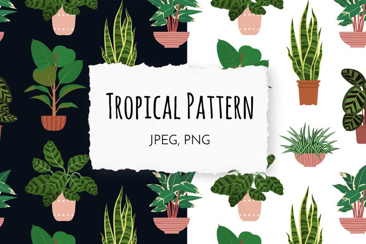 Tropical Potted Plants Seamless Patterns