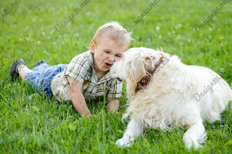 Cute toddler boy with golden retriever example image 1