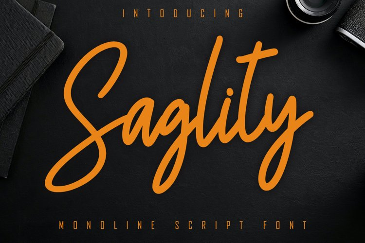 Saglity Monoline Script Font example image 1