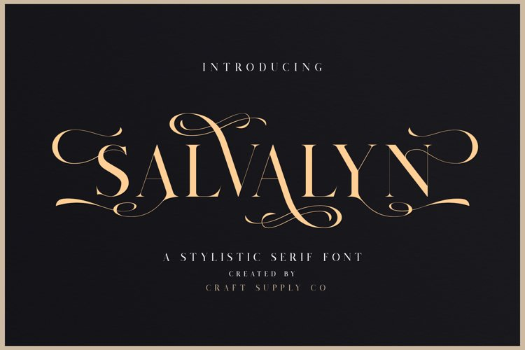 Salvalyn - Stylistic Serif Font example image 1