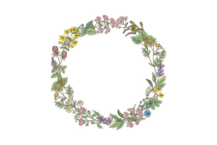 Wreath from hand drawn herbs and flowers example image 1