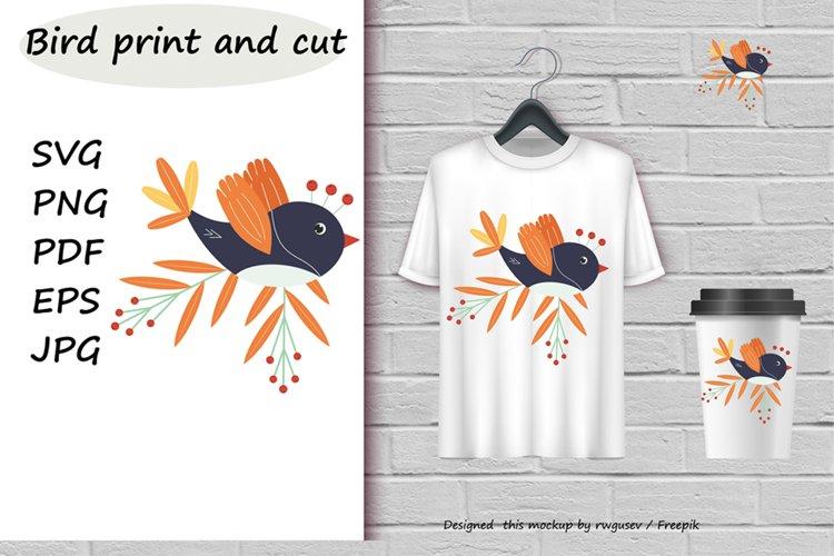 Bird svg. Bird print and cut