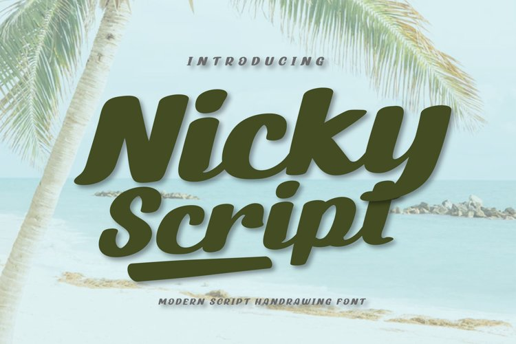 Nicky Script example image 1