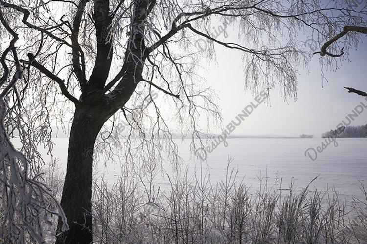 white fresh snow example image 1