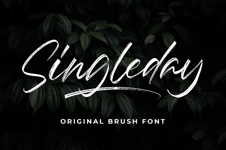 Singleday - Brush Font example image 1