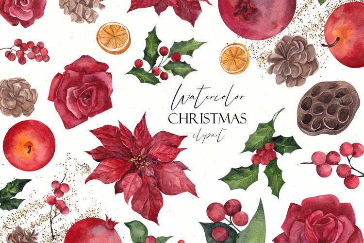 Watercolor Christmas Flowers. Christmas floral
