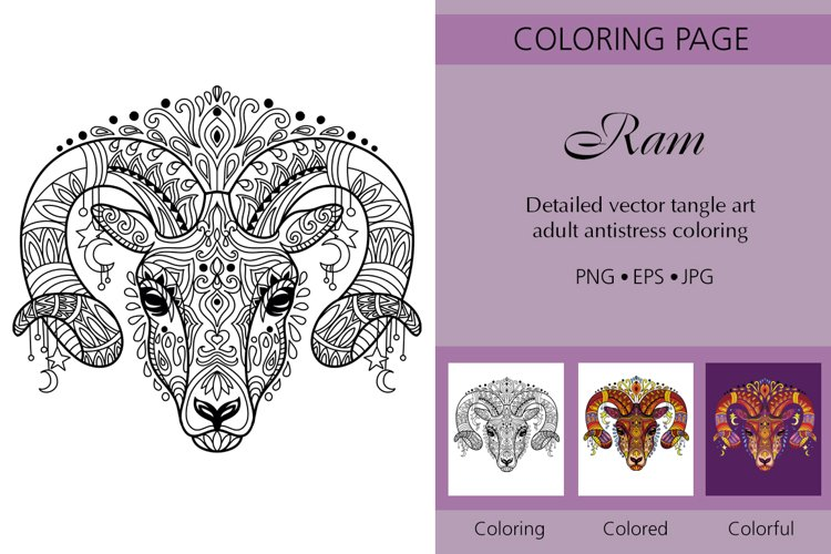 Coloring for adult tangled head of Ram