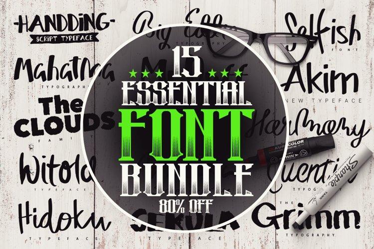 15 Essential Font Bundle example image 1