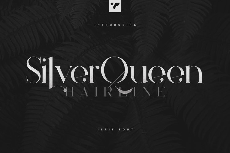 Silver Queen Serif Hairline example image 1
