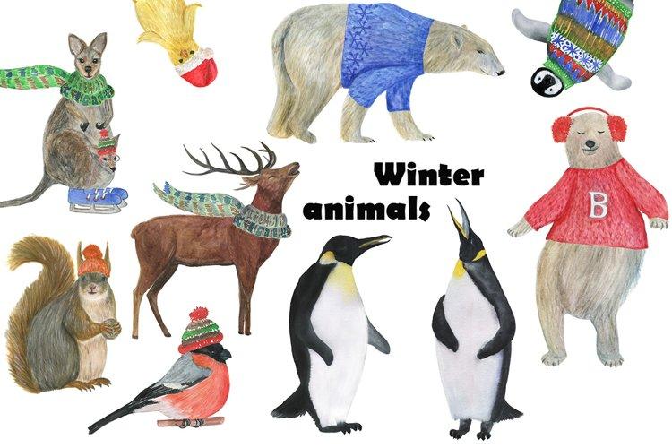 Winter animals example image 1