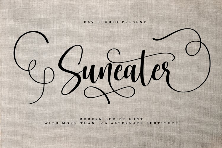 Suneater - Modern Script Font example image 1