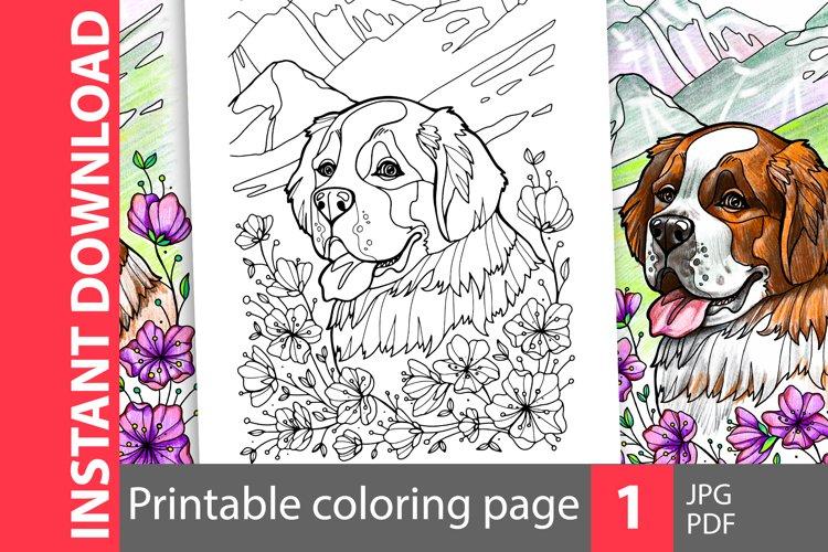 Saint Bernard coloring page example image 1