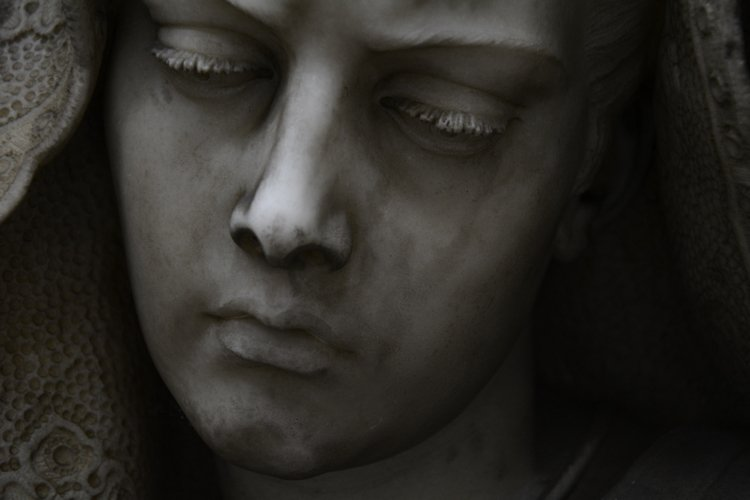Beautiful Sculpted Visage#1 example image 1