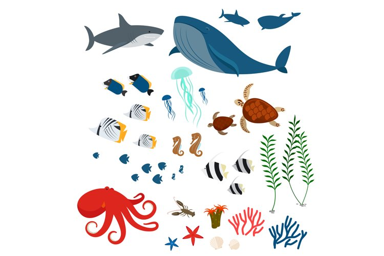 Ocean animals and fishes example image 1