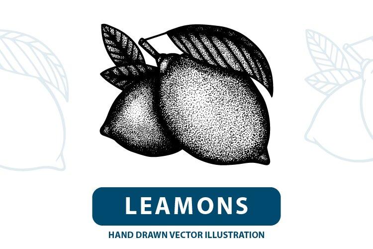 Lemons engraving style illustration. example image 1