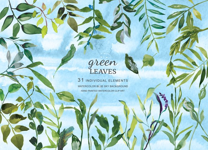 Hand Painted Watercolor Green Leaf Clip Art example image 1
