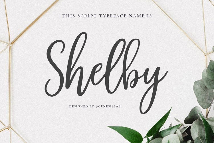 Shelby Script example image 1
