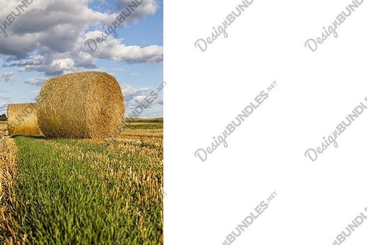 haystacks with straw example image 1
