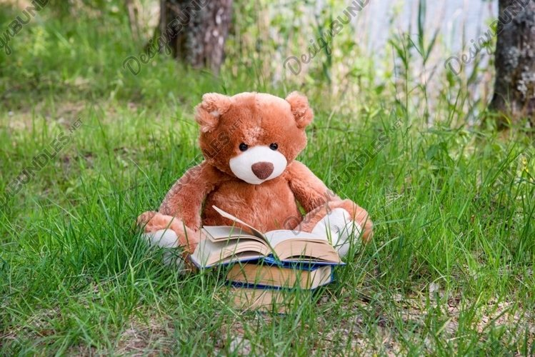 A Teddy bear reading book on summer grassland example image 1
