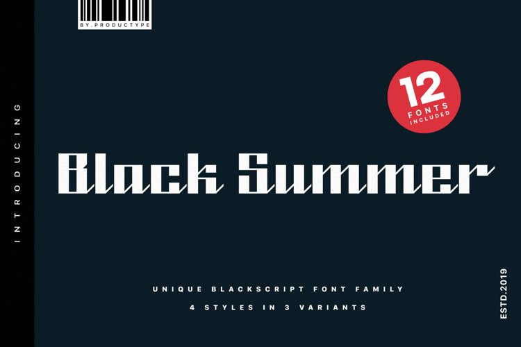 Black Summer Font Family example image 1