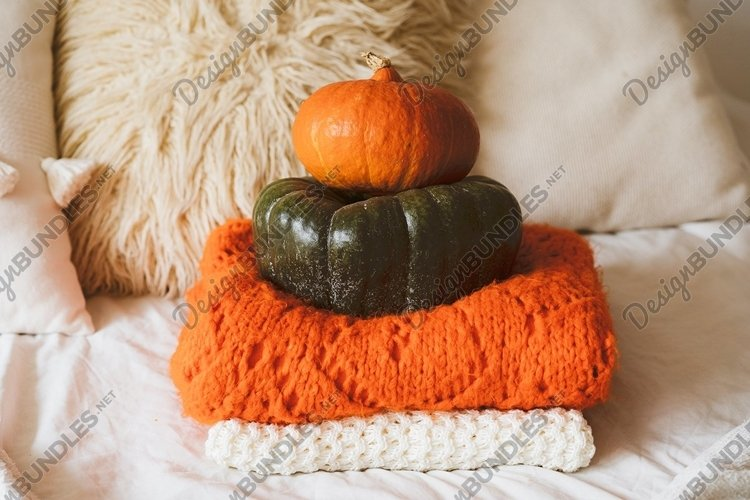 Two pumpkins green and orange.