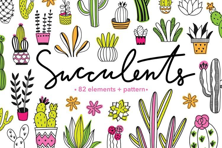 Succulents Illustrations   Pattern