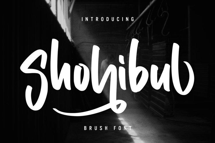 Shohibul - Brush Font example image 1