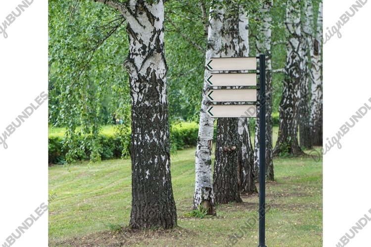Blank sign in the park on a background of trees example image 1