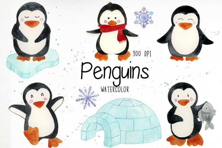 Watercolor Penguins Clipart, Penguins Clipart, Penguins PNG example image 1