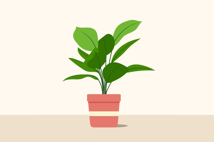 Decorative plants flat image design. Vector illustration example image 1