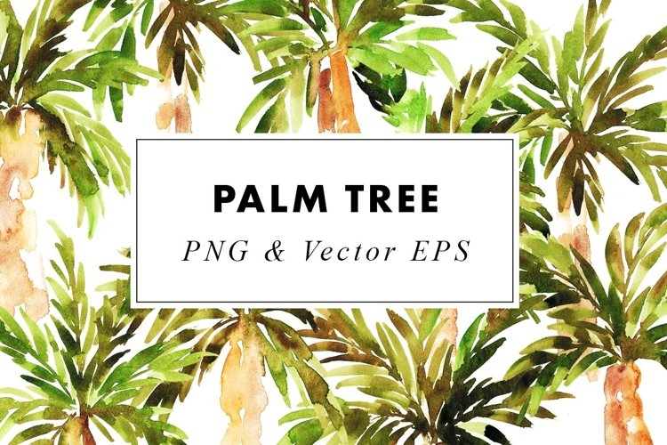 Watercolor Palm Tree Illustrations Clip Art in PNG   Vector
