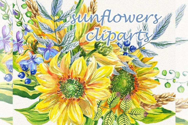 Sunflower clipart, sunflower watercolor clipart, floral
