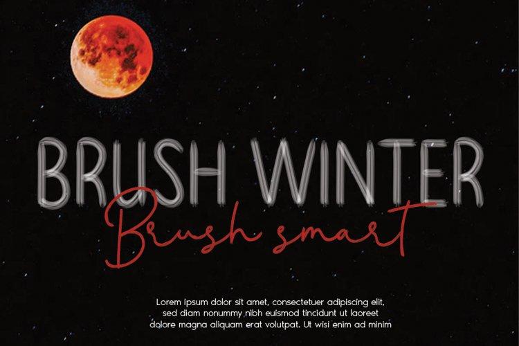 BRUSH WINTER example image 1