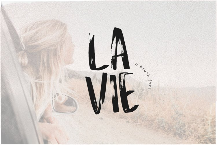 La Vie - A Handwritten Brush Font example image 1
