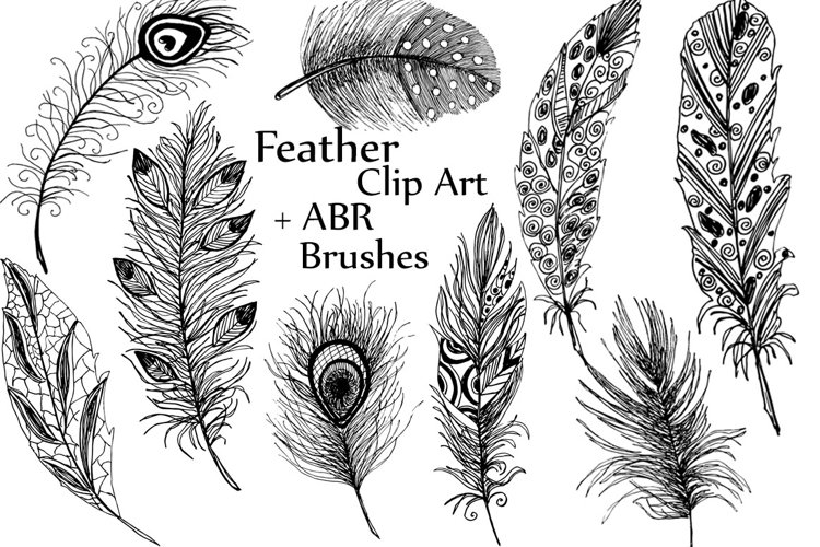Feather clipart ABR brushes example image 1