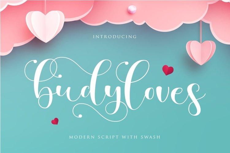 budyloves | valentine font example image 1