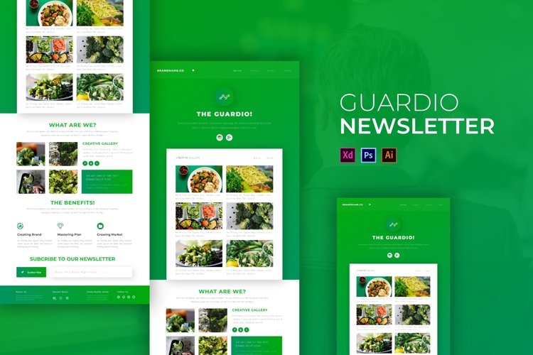 The Guardio   Email Newsletter Template example image 1