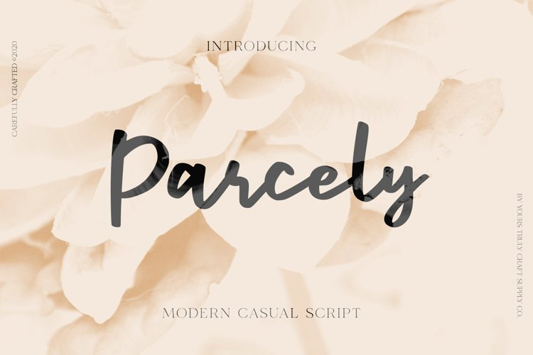Parcely - Modern Casual Script example image 1