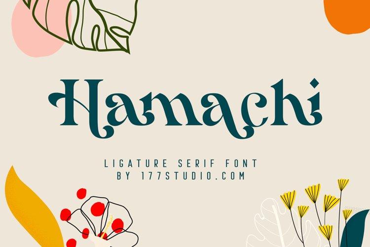 Hamachi Font example image 1
