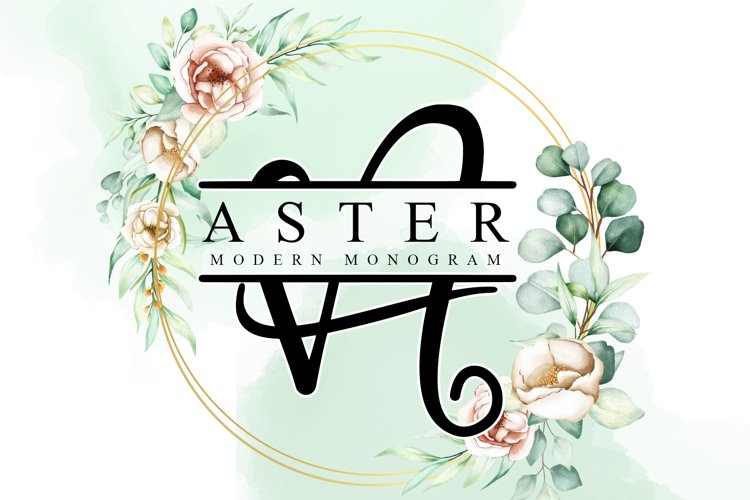 Aster Monogram example image 1