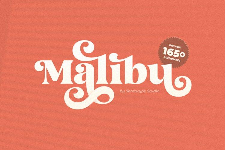 Malibu Fancy Vintage Font example image 1