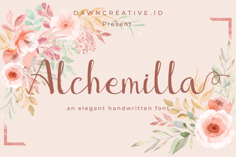 Alchemilla example image 1