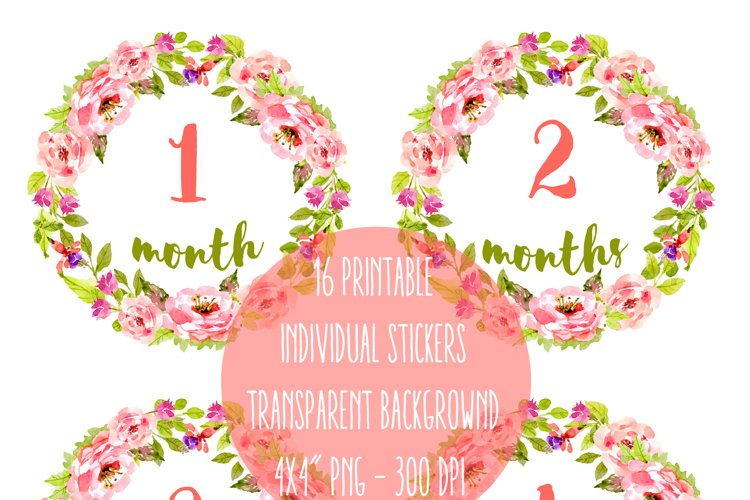 Baby stickers pack - Monthly Labels, Birth Milestones