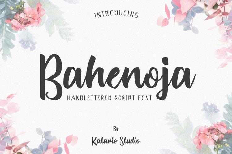 Bahenoja | Handwritten Web Font example image 1