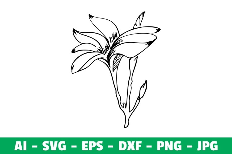 Flower Clipart SVG Craft example image 1
