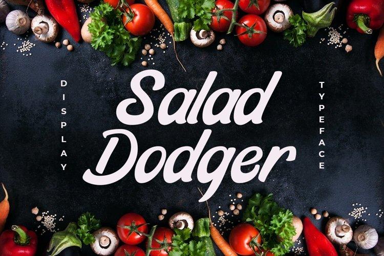Web Font Salad Dodger example image 1