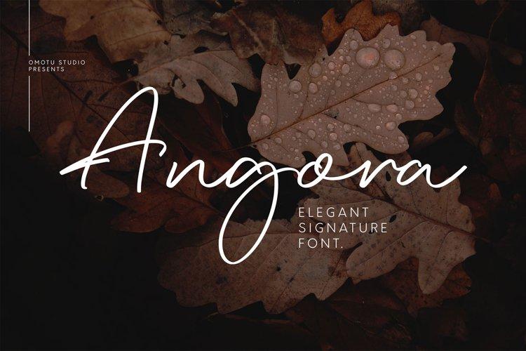 Angora example image 1