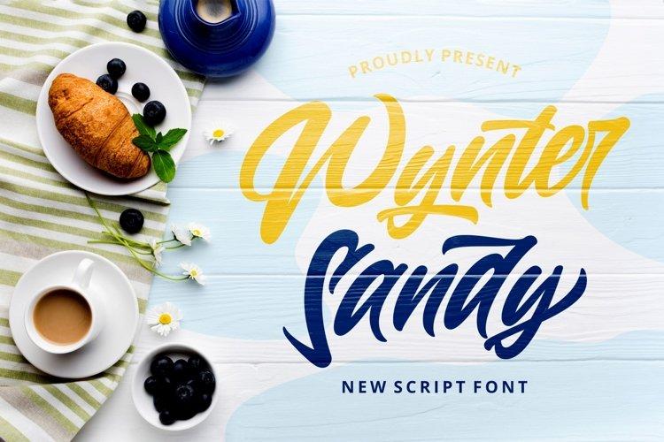 Wynter Sandy - Bold Script Font example image 1